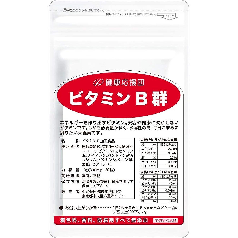 建てるコンパニオン機械健康応援団 お徳用ビタミンB群(6か月分)6袋360粒(葉酸プラス)