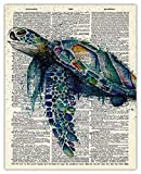 Watercolor Sea Turtle Dictionary Wall Art Print: Unique Room Decor for Boys, Men, Girls & Women - (8x10) Unframed Picture - Great Gift Idea Under $15 for Beach Houses
