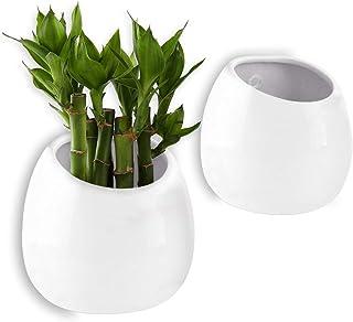 comprar comparacion T4U Macetas de Cerámica Colgantes 10CM Ceramics Paquete de 2, Macetas de Pared para Plantas Suculentas Decoraciones Flores...
