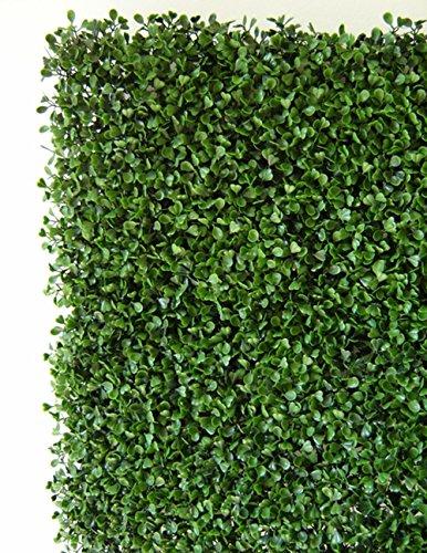 PEGANE Plaques murales Feuillage Effet buis Coloris Vert de 12 Dalles - Dim dal : 50 cm x 50 cm