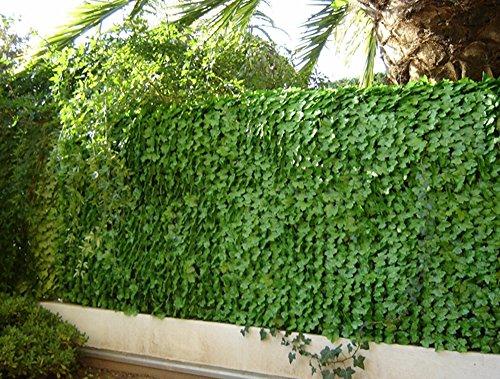 PEGANE Haie Artificielle Feuilles de Lierres Coloris Vert Tendre, 1,00m x 3m