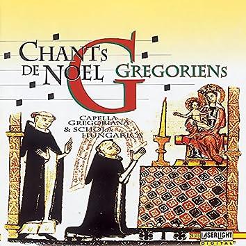 Chants De Noel Gregoriens