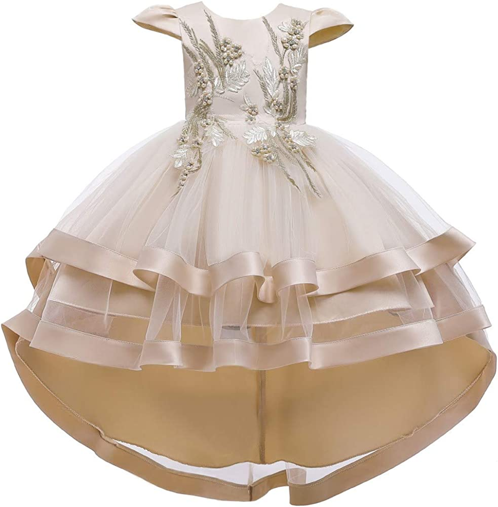 Some reservation FMYFWY Girls Embroidery High Gifts Low Tulle Dresses Cap Princ Sleeves