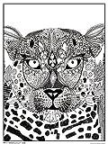 Trends International Sharon Turner 18'x 24' Coloring Poster