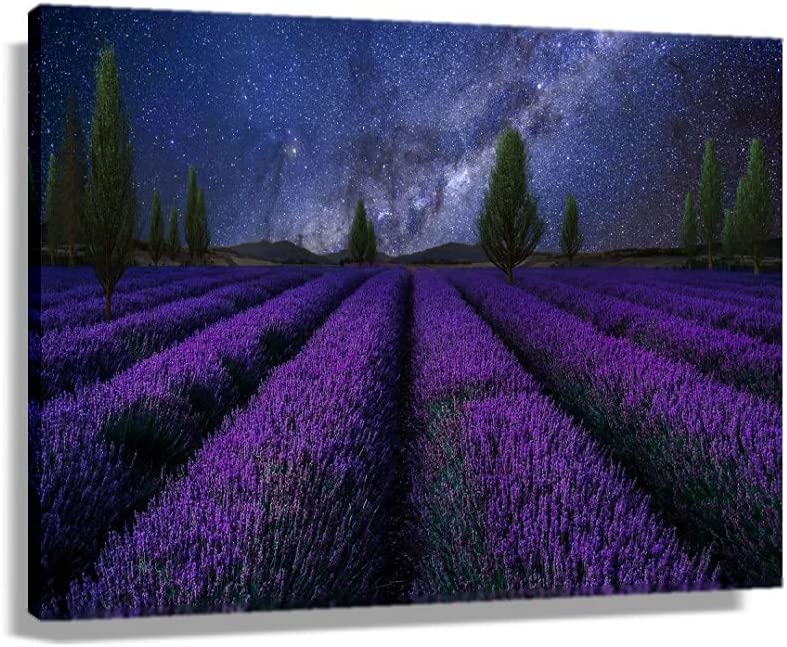 Landscape 35% OFF Lavender Flowers Nature Scenery Posters Ranking integrated 1st place Modern