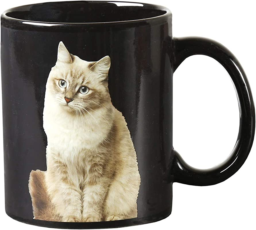Classics Imports Heat Change Cat Mug One Cat Leads To Another Changing Picture Appears With Hot Liquid