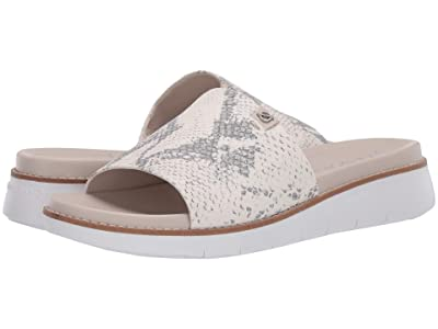 Cole Haan Zerogrand Global Slide Sandal (Ivory Chalk Snake Print/Optic White) Women