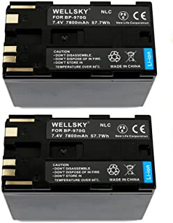 WELLSKY BP-975 BP-970G [ 2個セット ] 互換バッテリー [ 純正品と同じよう使用可能 純正充電器で充電可能 残量表示可能 ] キヤノン iVIS アイビス ビデオカメラ XF305 / XF300 / XF205 / ...