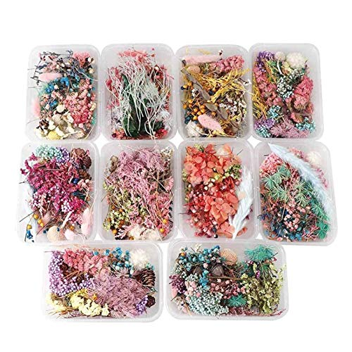HETHYAN Dried Flowers-1 Box Dried Flower Dry Plants For Aromatherapy Candle Epoxy Resin Necklace Making Craft DIY Accessories (Color : Send random)