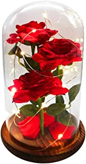 URBANSEASONS Beauty and The Beast Rose Enchanted Rose,Red Silk Rose and Led Light with Fallen Petals in Glass Dome on Wooden Base, for Valentine's Day Wedding Anniversary Mother's Day Birthday Party