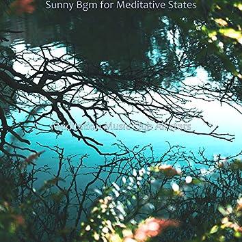 Sunny Bgm for Meditative States