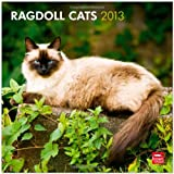 Ragdoll Cats 2013 Square 12X12 Wall Calendar (Multilingual Edition)