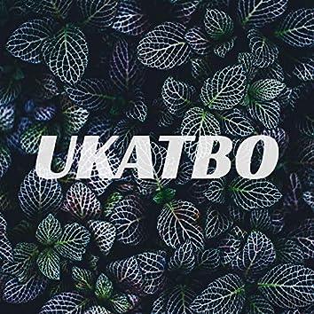 Ukatbo