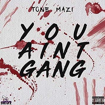 You Ain't Gang