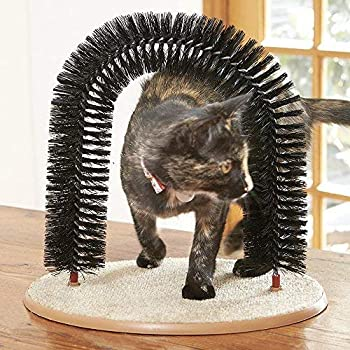 Click2Solutions The Purrfect Cat Arch Table de Massage et de toilettage pour Chat avec Herbe à Chat