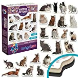 MAGDUM Photo Cats Breeds- Animal Magnets for Kitchen -Real Large Fridge Magnets for Toddlers- Magnetic Educational Toys Baby 3 Year Old Baby - Learning Magnets for Kids- Kid Magnets Magnetic Theatre