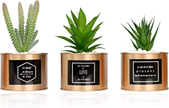 VGIA Mini Artificial Succulent Plants Plastic Fake Green Cactus Potted in Special Golden Can Pot Design for Mordern Desktop Home Office Décor – Set of 3