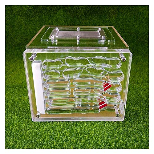 ZKZK Ant Farm Castle, Natur Insect Ecology Box Zuchtkäfig Kinder Spielzeug aus Kunststoff Ant Haus Set for Studien Ameisen in der 3D (Size : -)