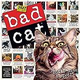 Bad Cat Wall Calendar 2022