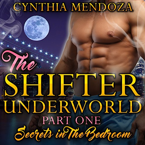 Secrets in the Bedroom Titelbild