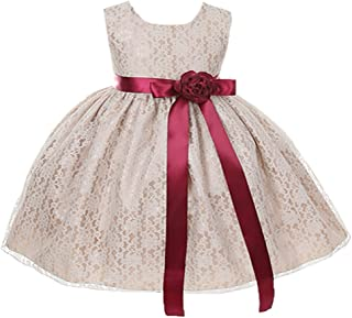6be929321 Cinderella Couture Baby Girls' Champagne Lace Flower Girl Dress & Flower  Sash