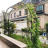 CHFQ 1.2Mx2.2M 3.5Mx2.2M Arco de jardín Resistente, Arcos de Rosas de Metal, pérgola para Bodas Enrejado, diámetro de la tubería: 19 mm, Color: Negro, Blanco, Verde, fácil de Montar, para Plantas