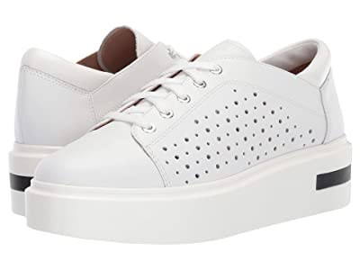LINEA Paolo Kendra Sneaker (White Leather) Women
