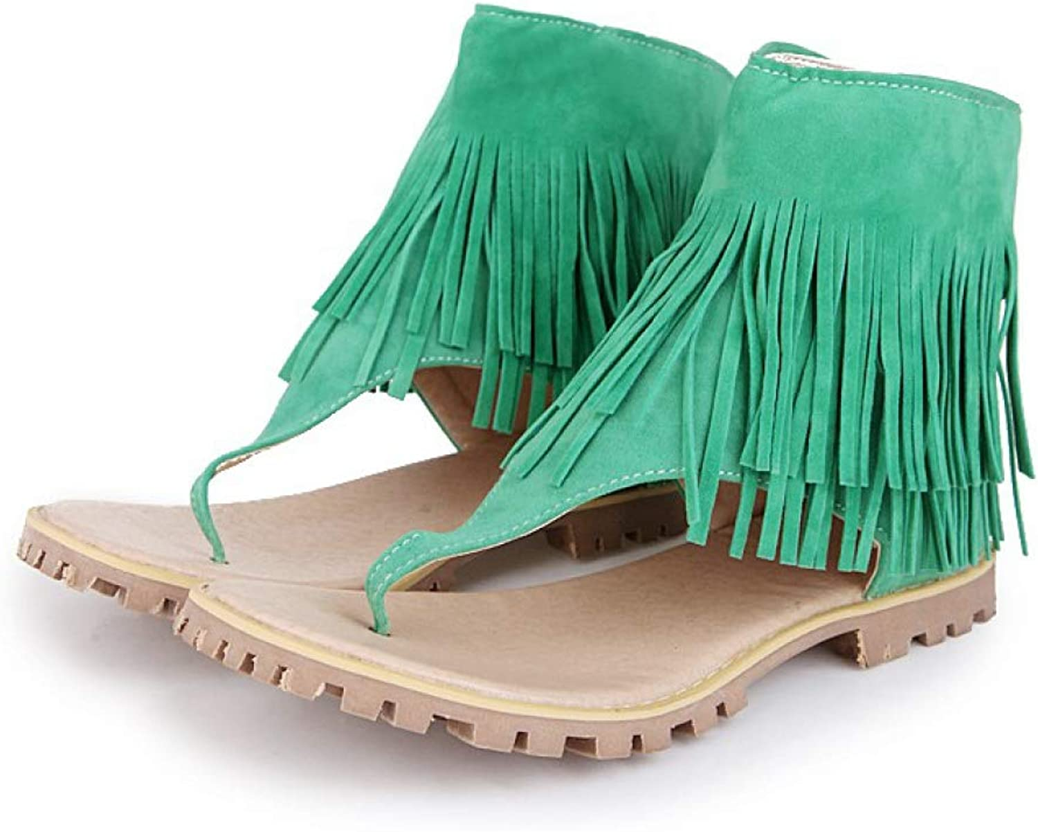 Women Sandals Ladies Flip Flops Female Zip-up Casual shoes with Fringe Tassel Sapato for Summer Spring