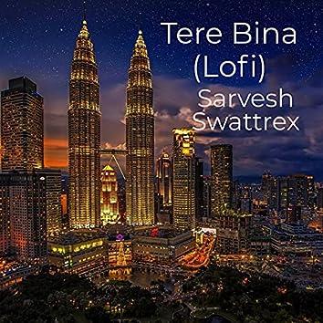 Tere Bina (Lofi)