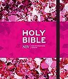 NIV Ruby Journalling Bible: Pink Metallic Hardback (Bible Niv)