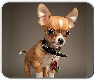 Impresión Chihuahua 2 Individual Silicio Suave Compatible En 240Mmx200Mmx2Mm Mousepad para Mujeres Choose Design 5-4