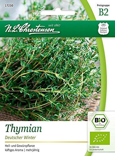 Bio Thymian 'Deutscher Winter' Saatgut Samen (Heil- und Gewürzpflanze)