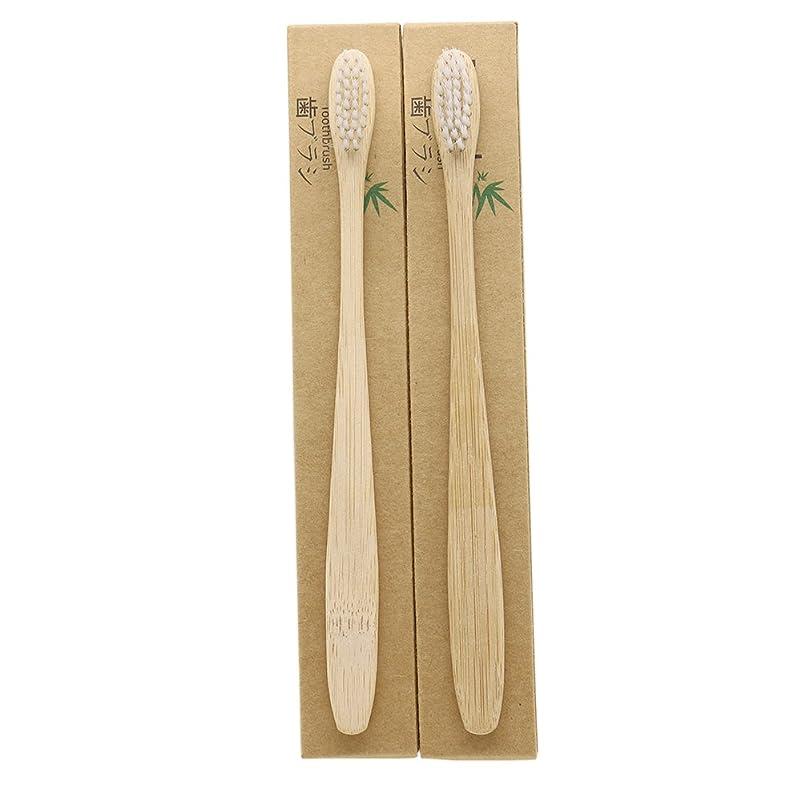 不快変化する敬なN-amboo 竹製耐久度高い 歯ブラシ 2本入り セット エコ ヘッド小さい 白い
