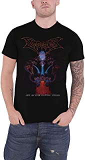 T Shirt Like an Ever Flowing Stream Band Logo Official Mens Black
