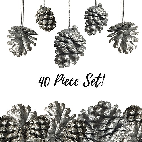 BANBERRY DESIGNS Silver Pine Cone Ornaments - Set of 40 Small Silver Pine Cones - Christmas Hanging Pinecone Ornaments – Silver Painted