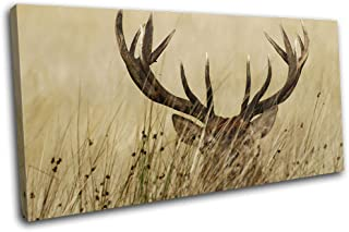 Bold Bloc Design - Stag in Grass Cream Sepia Deer Elk Animals 180x90cm Single Canvas Art Print Box Framed Picture Wall Hanging - Hand Made in The UK - Framed and Ready to Hang RC-0751(00B)-SG21-LO-D