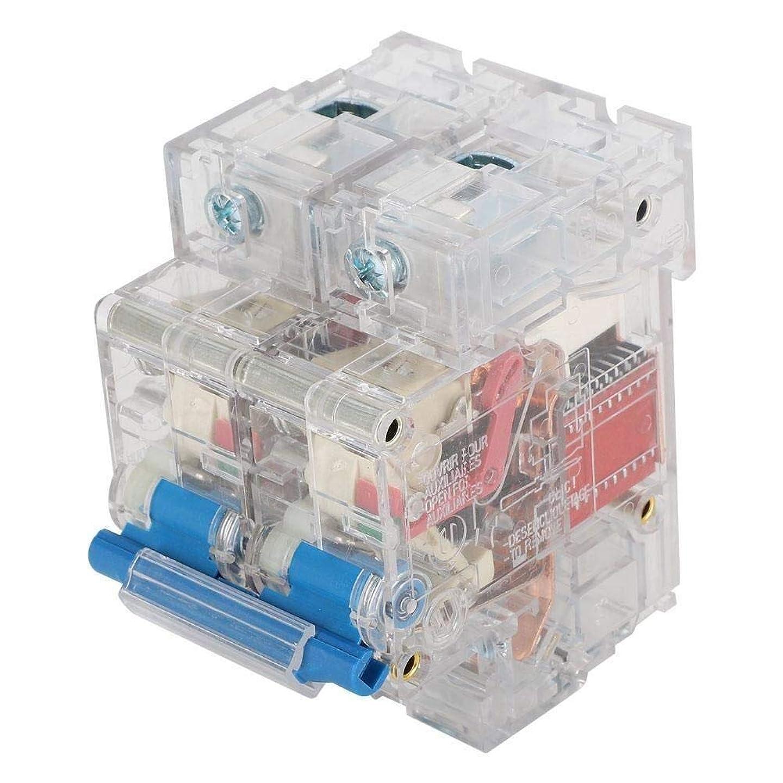 お風呂傷つきやすい天気ZYW-WW 保護回路 2極回路ブレーカDZ47 DINレール取付サーキットブレーカAC 63A / 80A / 100A / 125Aミニチュアブレーカ(DZ47-2P(63A))