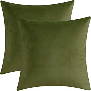 Artcest Set of 2 Decorative Velvet Throw Pillow Cases, Soft Solid Cushion Covers for Sofa Couch and Bed, 14x14, Sage Green