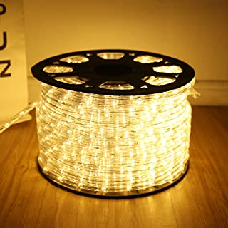 DINGFU Upgraded 100 Feet Led Rope Lights ,2-Wire Low Voltage Waterproof Warm White Rope Lights Kit, Strip Lighting for Indoor and Outdoor Background,Yard,Garden ,Bridges Decoration with UL Certified