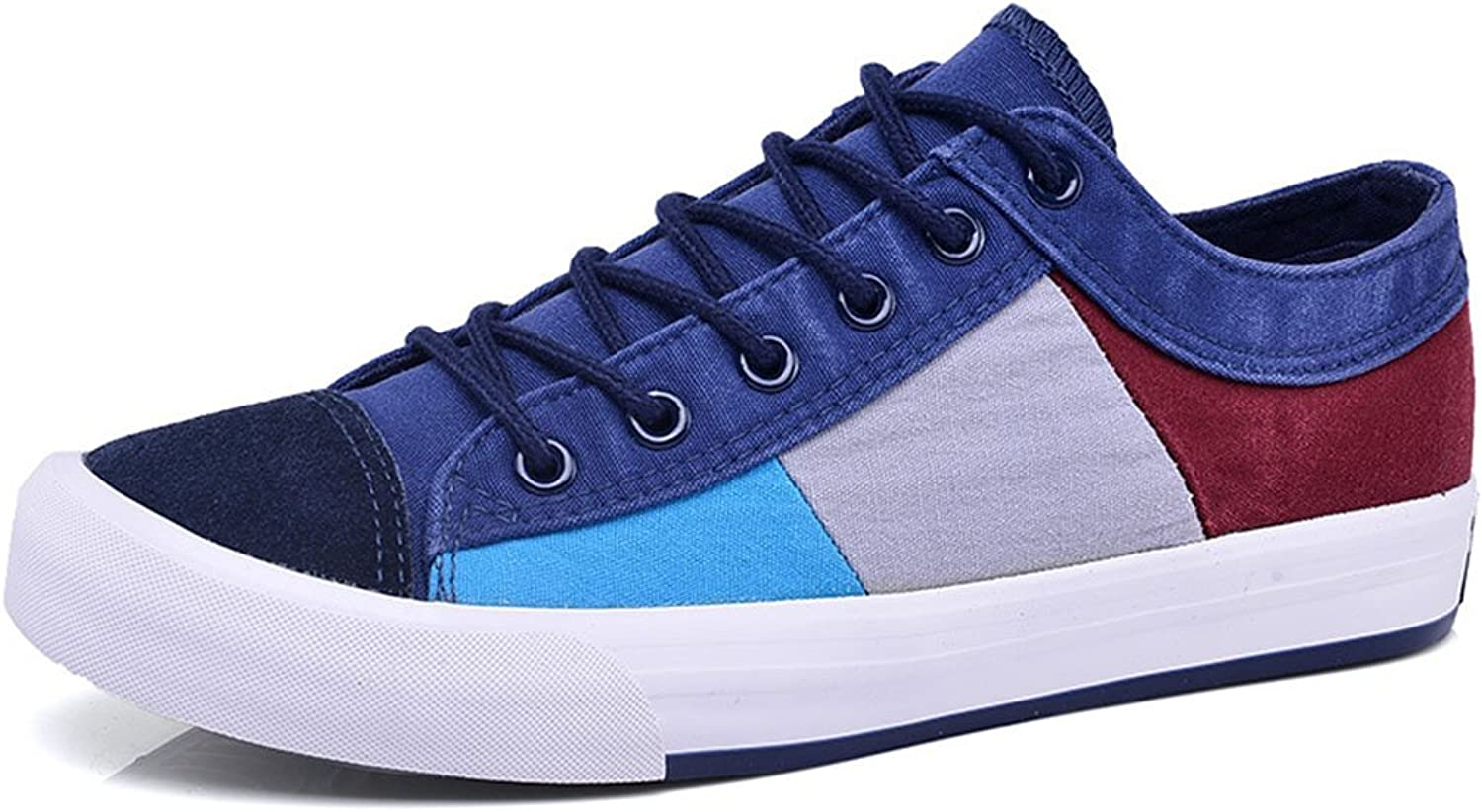 GAOLIXIA Men's Canvas shoes Fashion Breathable Casual shoes Flat Sports shoes Outdoor for Walking Casual