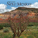New Mexico Wild & Scenic 2020 12 x 12 Inch Monthly Square Wall Calendar, USA United States of America Southwest State Nature