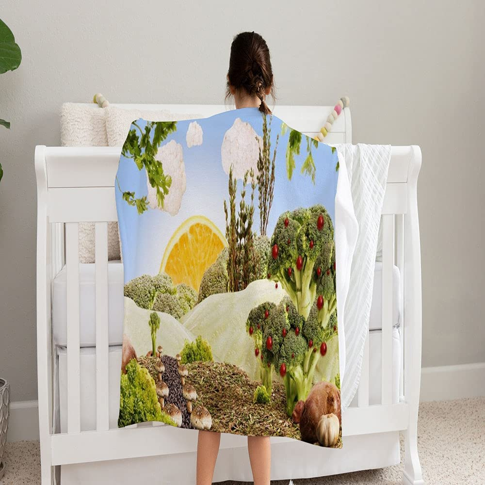 Ranking TOP13 GANTEE Landscape Made by 2021 autumn and winter new Vegetables Super Soft Blanket a Fruits