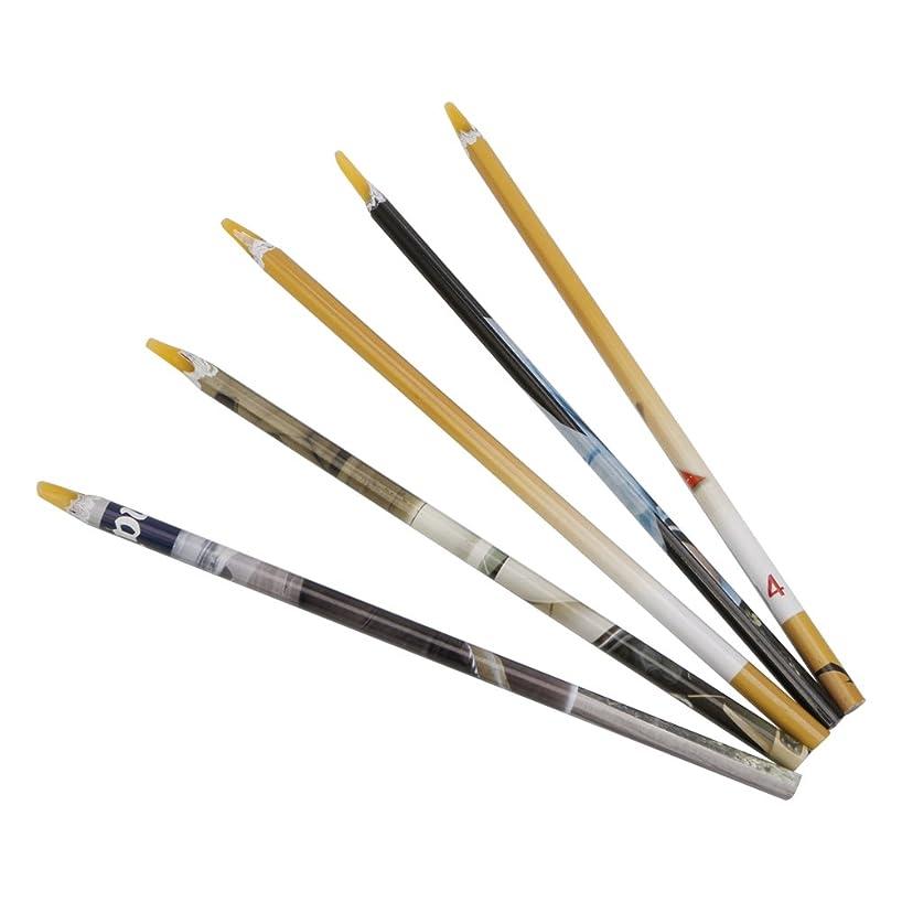 湿ったカーペットペチュランスSharring 1 Pcネイルアートクラフトツールワックスペン宝石クリスタルラインストーンピッカー鉛筆 [並行輸入品]