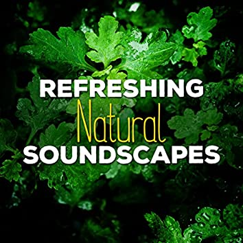 Refreshing Natural Soundscapes