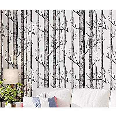 Buy Birch Tree Wallpaper H2mtool Removable Self Adhesive Wood Wallpaper Peel And Stick 17 7 X 78 7 White Birch Online In Canada B07pjyqh4m