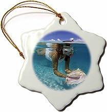 3dRose Home Décor Accents, ORN_75171_1, 3 inch Snowflake Porcelain Ornament