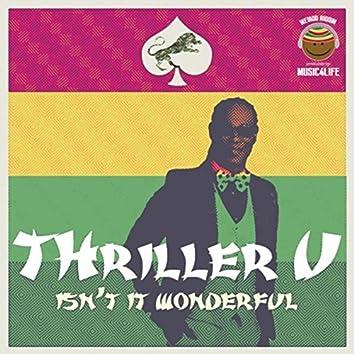 Isn't It Wonderful - Single