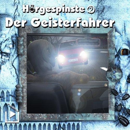 Der Geisterfahrer Titelbild