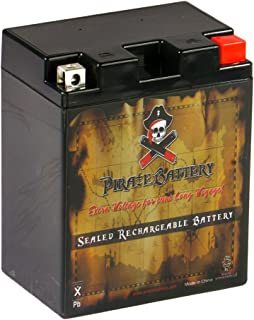 YTX14AHL-BS High Performance Power Sports Battery - Rechargeable, 210 CCA, Chrome Battery