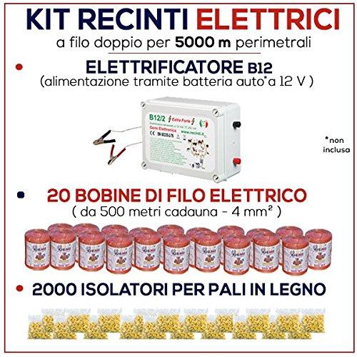 Kit für Weidezaun 5000 Meter - Weidezaungerät B/12 + Weidezaun Litze + Isolatoren für Holzpfähle / eisenpfähle GEMI